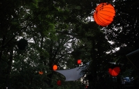 The weatherproof and robust lampion Barlooon at the Bergkirchweih in Erlangen at the cellars in the trees in size L.