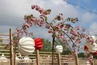 Our Barlooon in white and red at the garden show in the Havel region 2015 - At the Packhof in the cherry blossom.
