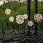 Wetterfester und robuster Lampion Barlooon in weiß in einem ursprünglichen Wald