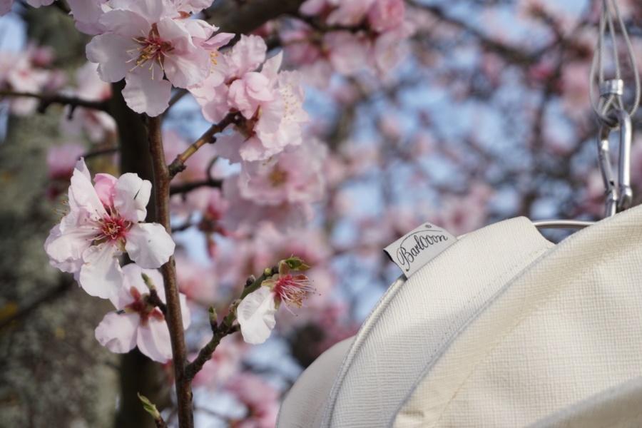 Wetterfester outdoor Lampion Barlooon in weiß im blühenden Baum