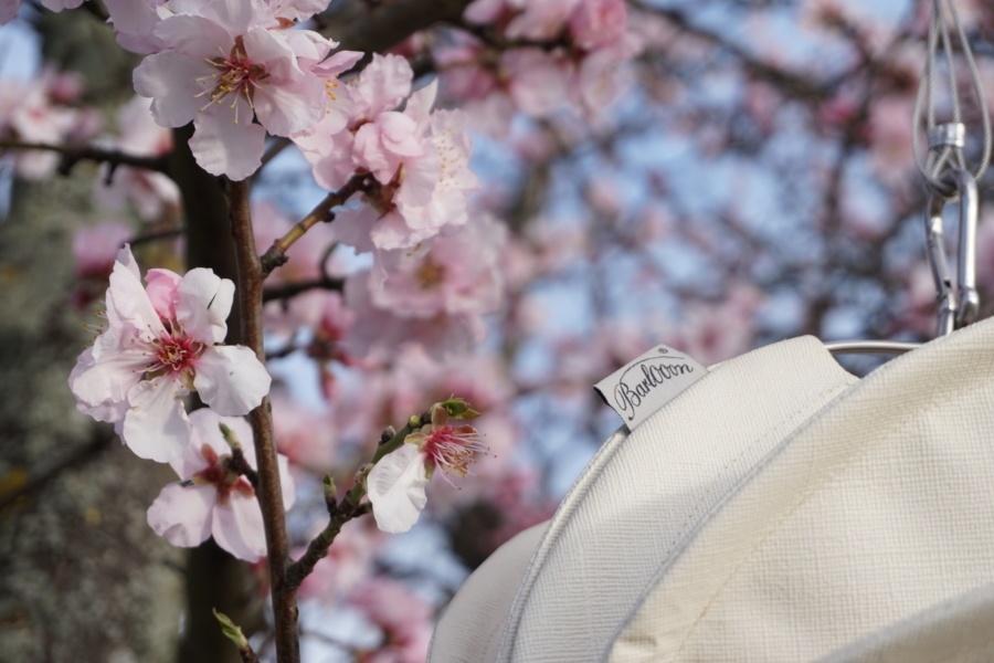 Weatherproof Outdoor Lampion Barlooon in White in Flowering Tree